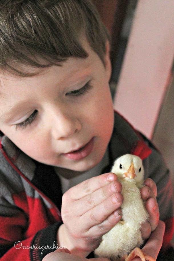 A chicks {Onekriegerchick.com}
