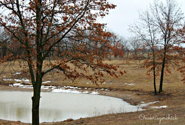 Spring pond at {Onekriegerchick.com}
